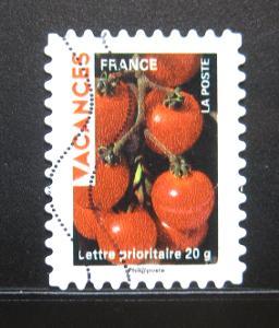 Francie 2009 Pozdrav z dovolené Mi# 4667 0531