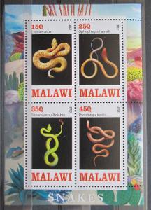 Malawi 2013 FAUNA, Plazi, Hadi Aršík 0569
