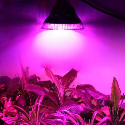 24W led světlo pro pěstování rostlin E27