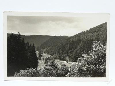 hrad Litice, Litice n. Orl., Ústí nad Orlicí 1931
