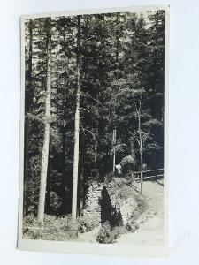 Orlické hory - Potštejn, Rychnov - hrad