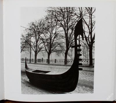 V. Reichmann monografie - (C516)
