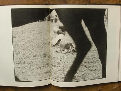 Koně - Pavel Dias - (E865)