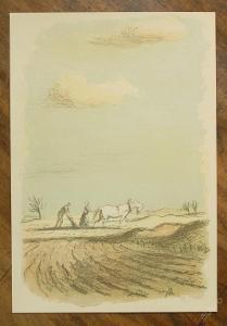 Karel Müller - orig. litografie - (E403)