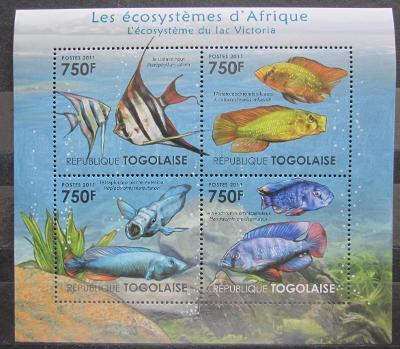 Togo 2011 Ryby z Viktoriina jezera Mi# 4177-80 Kat 12€ 0878