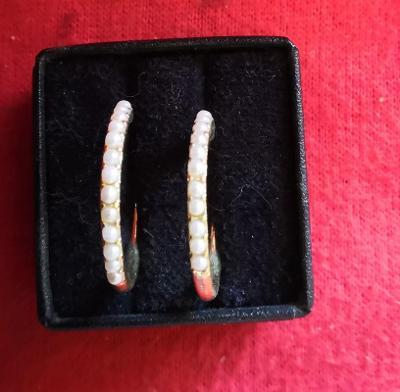 Náušnice s kamínky...(10599)