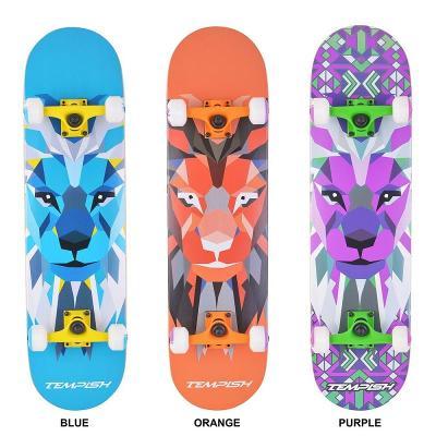 Tempish LION skateboard + reflexní sada