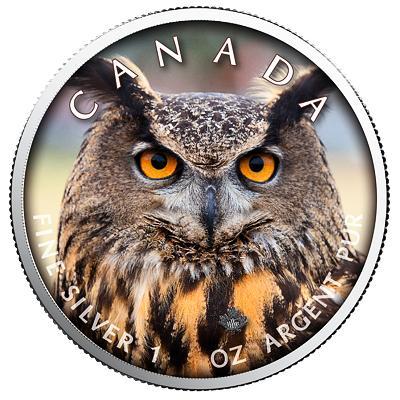 Kanada, 1 unce 2019, Ag 999,9 Sova, raženo pouze 500 kusů