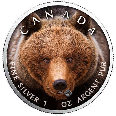 Kanada, 1 unce 2019, Ag 999,9 medvěd Grizly, raženo pouze 500 kusů
