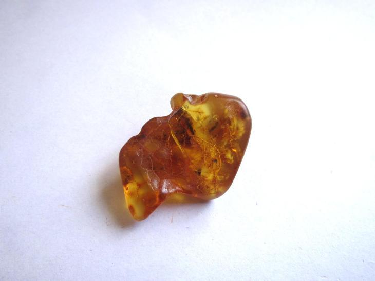 JANTAR - BALT  (Ž 459) - Minerály a zkameněliny