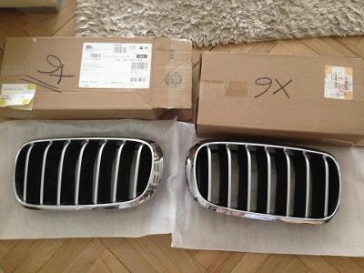 Ledvinky BMW X6 X5