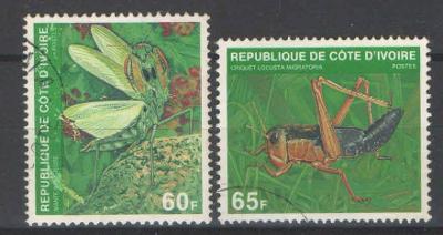 O POBŘEŽÍ SLONOVINY hmyz 1980
