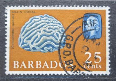 Barbados 1966 Korál Mi# 244 Y 1965