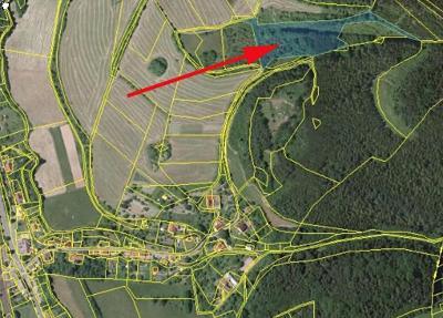 Prodej louky 11 762 m² Rozhraní, okres Svitavy (22 Kč/m2)