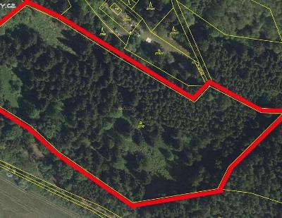 Prodej lesa 21 827 m² Brtnice, okres Jihlaval (38 Kč/m2)