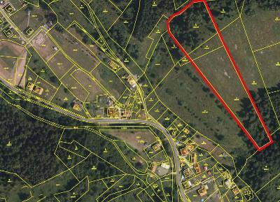 Prodej lesa 13 741 m² Halenkov, okres Vsetín (32 Kč/m2)