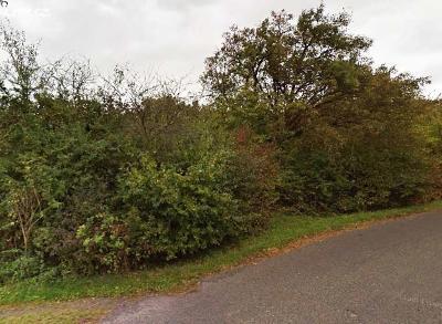 Prodej lesa 3 970 m² Opočno, okres Louny  (24 Kč/m2)