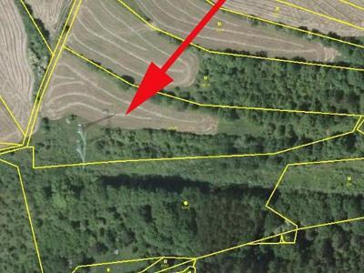 Prodej louky 7 995 m² Rozhraní, okres Svitavy  (21 Kč/m2)