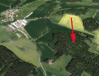 Prodej lesa 21 886 m² Úlehle, okres Strakonice (32 Kč/m2)