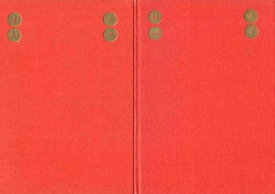 Rusko-český technický slovník - sada 2 knihy v pouzdře (1968)