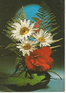 kytice, foto Ing. J. Novotný, srdečné přání 3-1713°