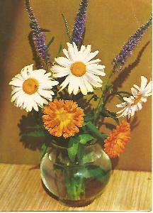 kytice, foto Adolf Mlejnek, srdečné přání 3-1793°