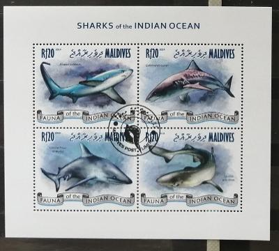 Maledivy 2014 - CTO aršík, ostrovní žraloci, ryby