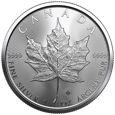 stříbrné mince Maple Leaf 1 oz 999,9/1000 v plastové kapsičce
