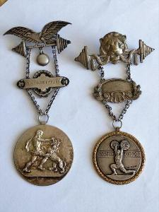 Rakousko Sada Dva pamětní sportovni odznaka 1925 a 1938, stříbro