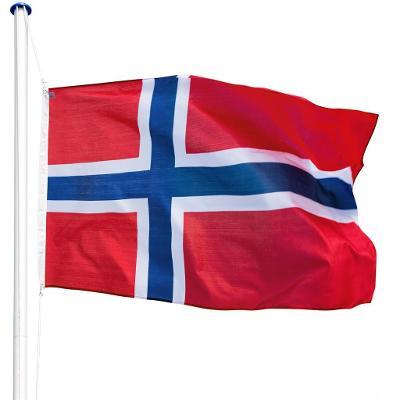 tectake 402852 hliníkový stožár s vlajkou - norsko