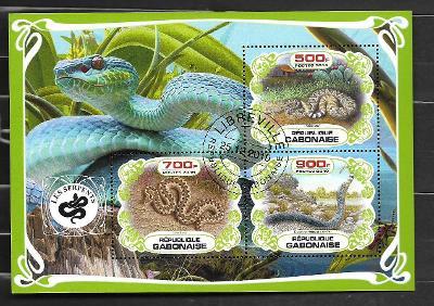 Gabon - hadi - chřestýš západní, zmije obecná, texaský indigový had