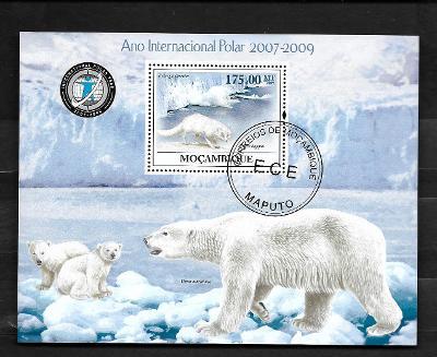 Mosambik 2009 - Polární liška, lední medvěd s medvíďaty