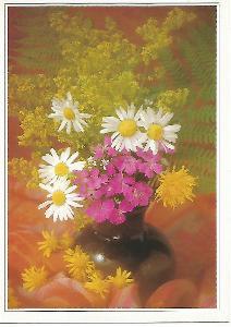 kytice, foto Veronika Stibalová, ALBIREO 5-2150°°