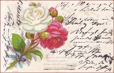 Květiny * růže, kytice, báseň, gratulační * M5686