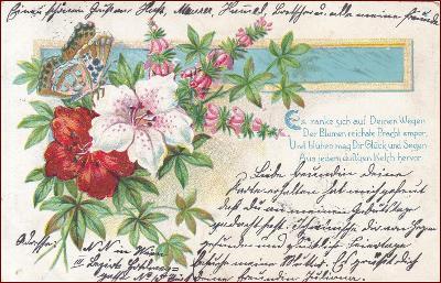 Květiny * motýl, kytice, báseň, litografie, gratulační * M6363