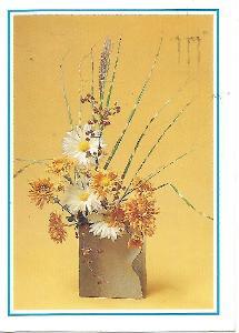 květiny, foto E. Čeňková, Srdečné blahoželanie (Slovensko) 4-2396°°