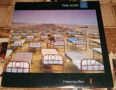 LP - Pink Floyd - A Momentary Lapse of Reason (1989) / Luxusní stav!