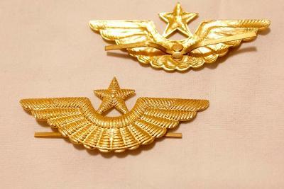 Odznak. Kokarda. Letectvo. Armáda.  SSSR. Rusko.