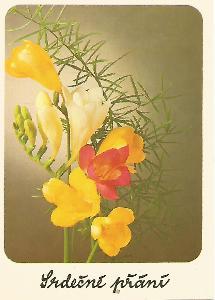 květy, foto M. Janata, Srdečné přání 5-2649°°