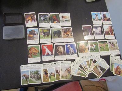 Karty psí a koní neúplné viz foto