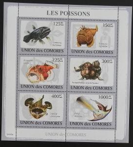 Komory 2009 Mi.2107-12 14€ - Africké mořské ryby, fauna