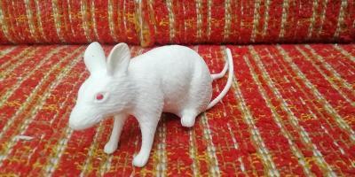 Dětská Hračka potkan /myš