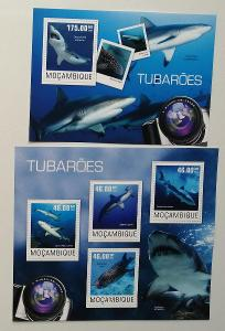 Mozambik 2014 Mi.7570-3+Bl.954 20€ - Fotografie a žraloci, ryby