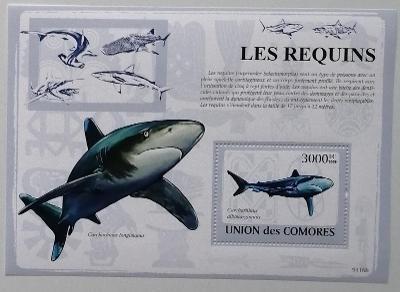 Komory 2009 Bl.480 15€ Žraloci, mořské ryby