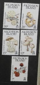 Ascension 1983 8,5€ Ostrovní houby, mykologie a flora