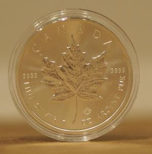 Kanadská stříbrná investiční mince Maple Leaf 2019 (1 oz)