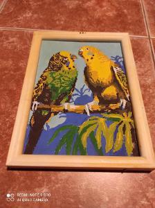 Obrázek papoušci / tempera