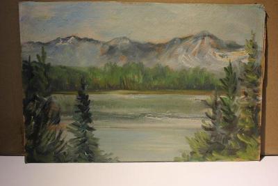 obraz-horská krajina sign.