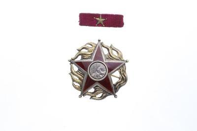 Hvězda ŘÁD 25. února 1948