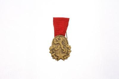 Československé vyznamenání práce, dekorace Za vědu, umění, výzkum, výr